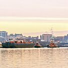 Port of Albany by main1