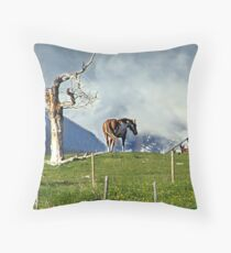 Where Have All The People Gone? Throw Pillow