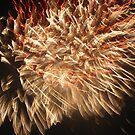 Fireworks 11 by Yvonne Carsley