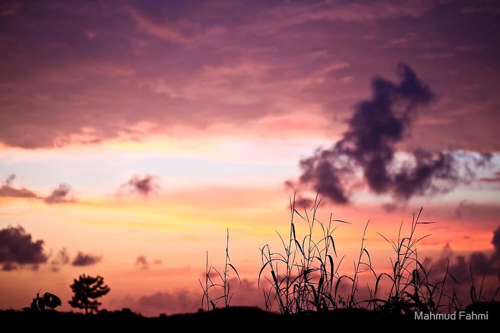 Sunset by Mahmud Fahmi