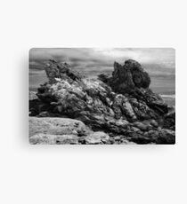 Tarkine Rocks Canvas Print