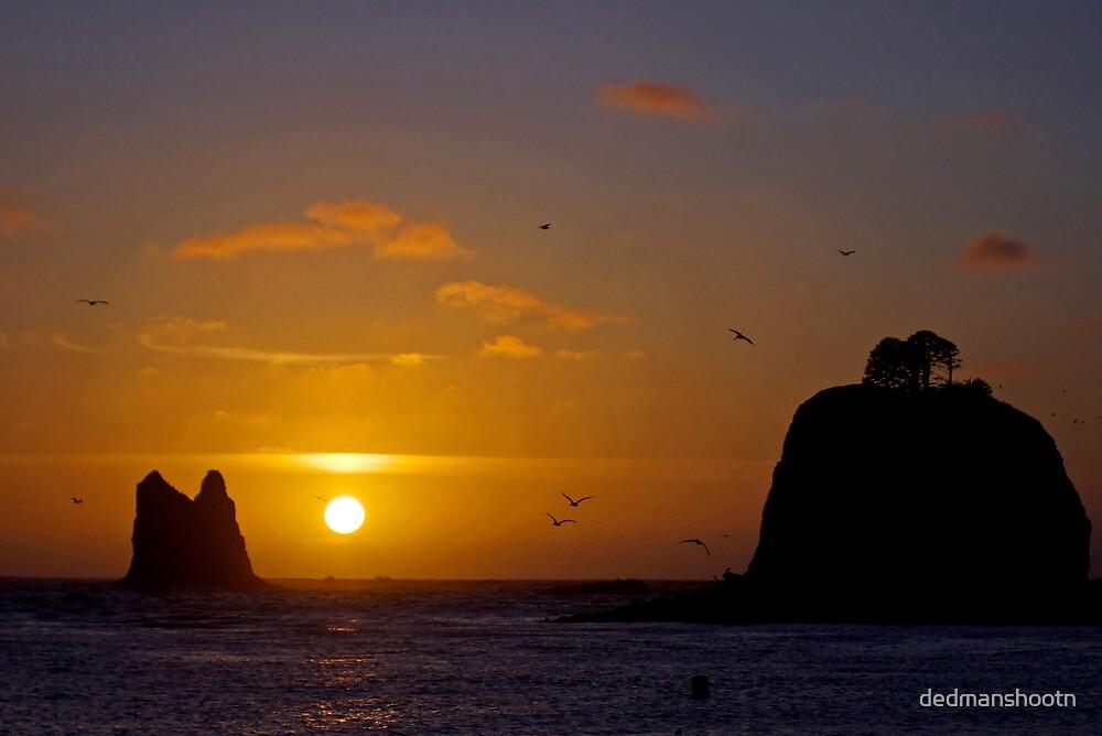 sunset at la push, wa, usa by dedmanshootn