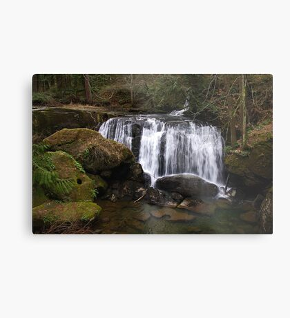 beautiful whatcom falls Metal Print