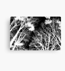 Ghostly Giants Canvas Print