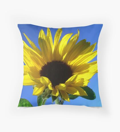 Sunflowers with morning dew  Throw Pillow