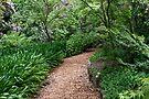 ~ Wairoa Garden ~ by LeeoPhotography