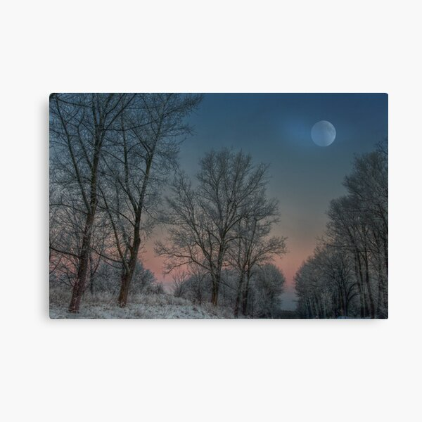 Christmas way Canvas Print