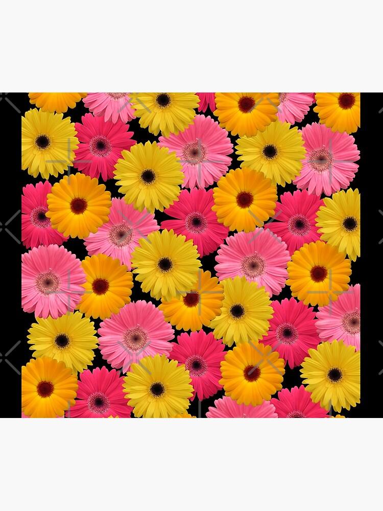 Gerbera Blumen von rhnaturestyles