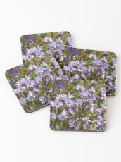 Purple Daisy's Coasters