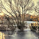 Winter river by Mike Higgins
