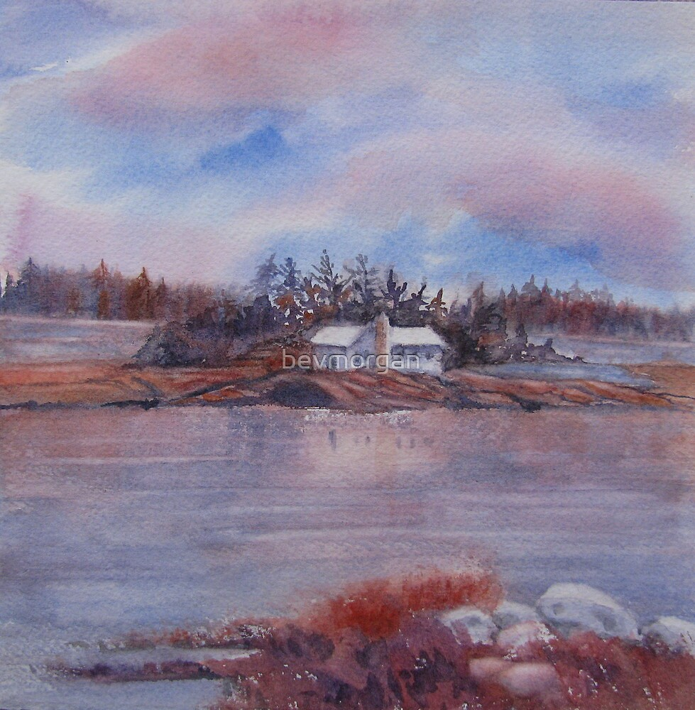 November in the Bay by bevmorgan