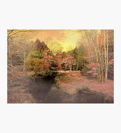 Color My World Photographic Print