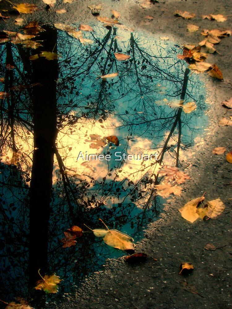 Reflections of Blackbird Island by Aimee Stewart