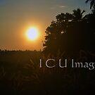 Swheat Sunset by DakiniGoddess