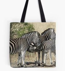 Young zebra suckling! Tote Bag