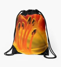 Queen for a Day   ^ Drawstring Bag