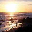 Malibu Sunset 1 by CallinoisArt