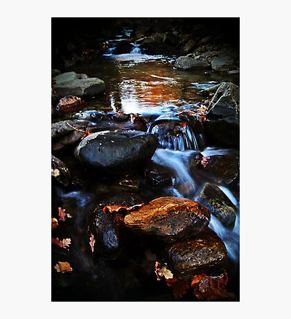 Dream A Little Stream With Me. Photographic Print