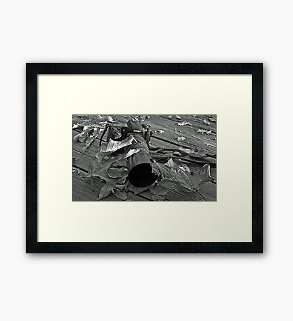 Neglected Nikon 2 .....(Be Back Soon!)  Framed Print