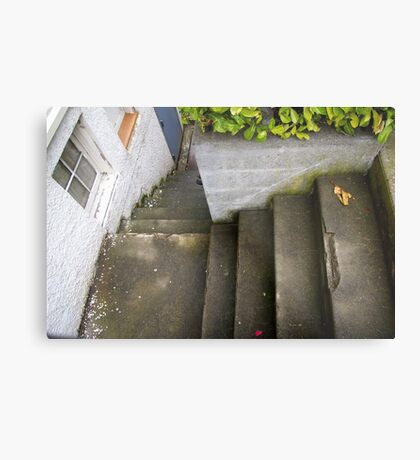 down the outside staircase Metal Print