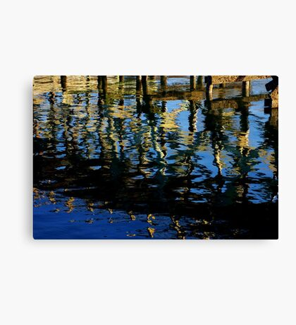 little lost grebe Canvas Print