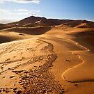 Sahara by Kerry Dunstone