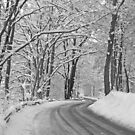 Winter road by Trine