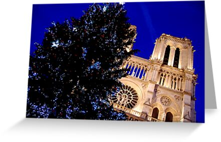 Paris - Notre-Dame and the Chrismas tree by Jean-Luc Rollier