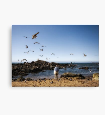 the man who talked to seagulls Canvas Print