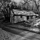 A Home in the Wood - Cottage in Snow, Cultra, County Down. by Laura Butler