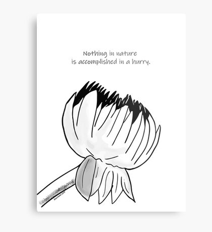 Nothing In Nature Is Accomplised In A Hurry Metal Print