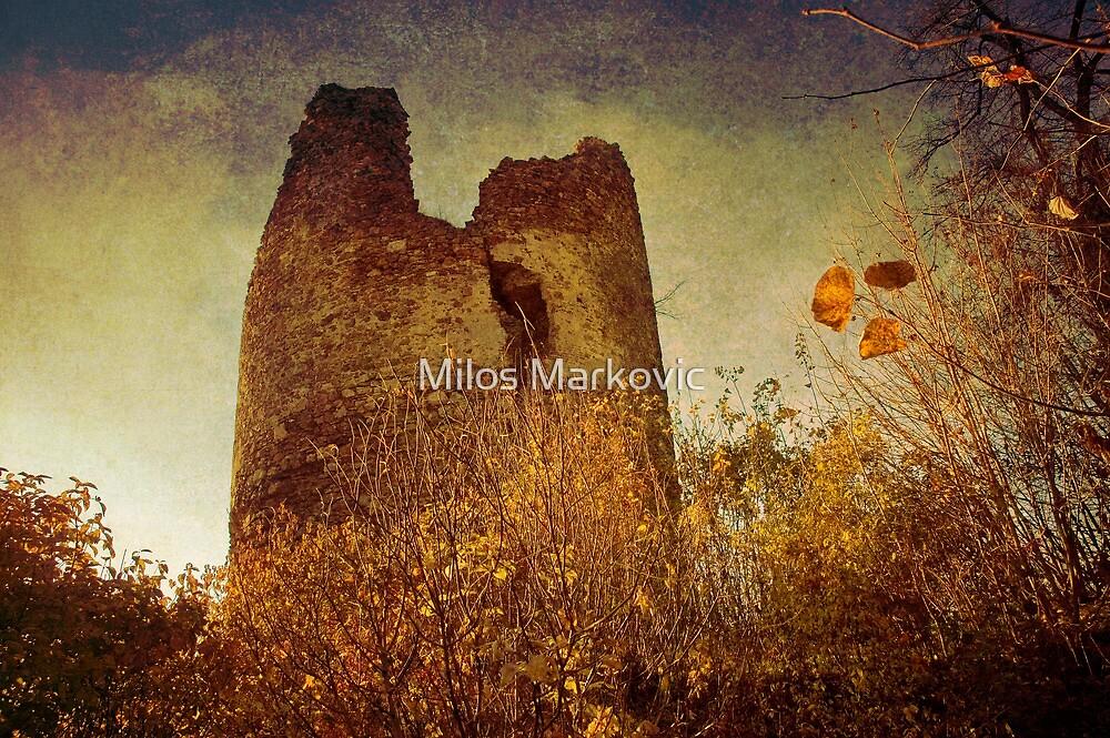 Vrdnik tower by Milos Markovic