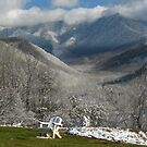 Deja View the Smokies...a resting place by Dan Casey Campbell