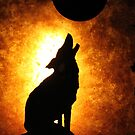 Howling at the moon by Elspeth  McClanahan