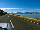The Road to Mt Cook by Odille Esmonde-Morgan