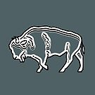 Buffalo First by roccoyou