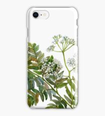 Watercolor fern and flowers iPhone Case/Skin