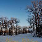 Twilight on the Slope - Holiday Card # 1 by Debra Fedchin