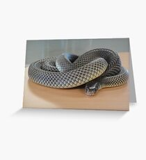 Deadly Snake Greeting Card