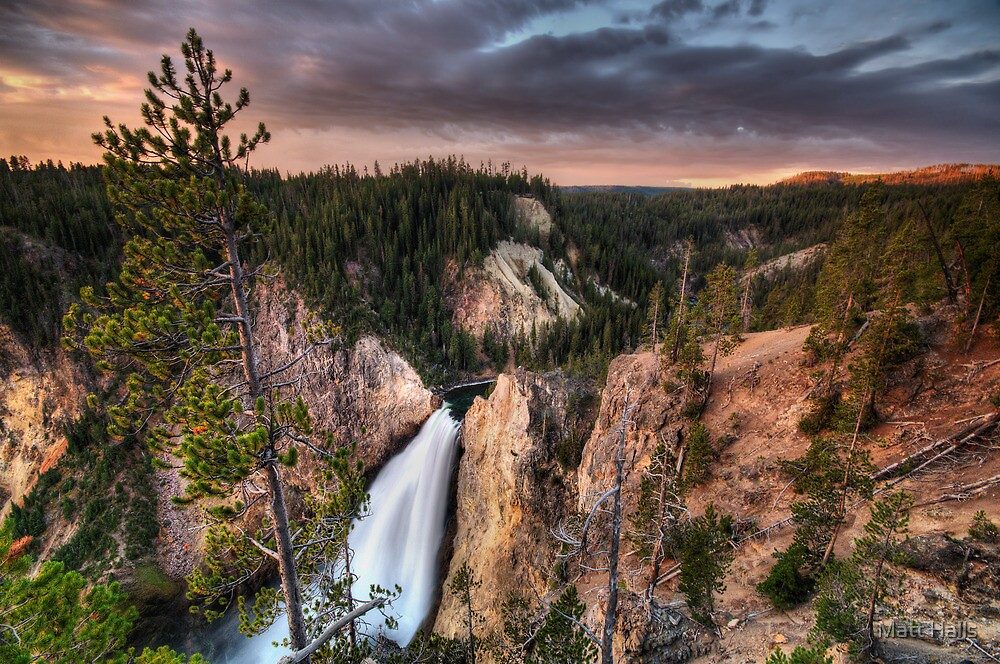 Dawn Tones of Yellowstone by Matt Halls