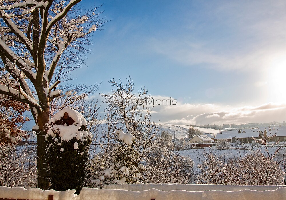 Winter Wonderland by Lynne Morris