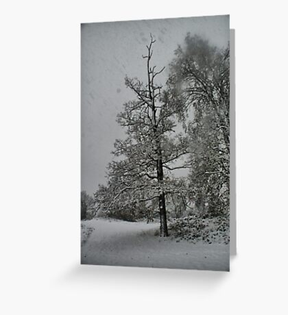 Snow Storm 1 Greeting Card