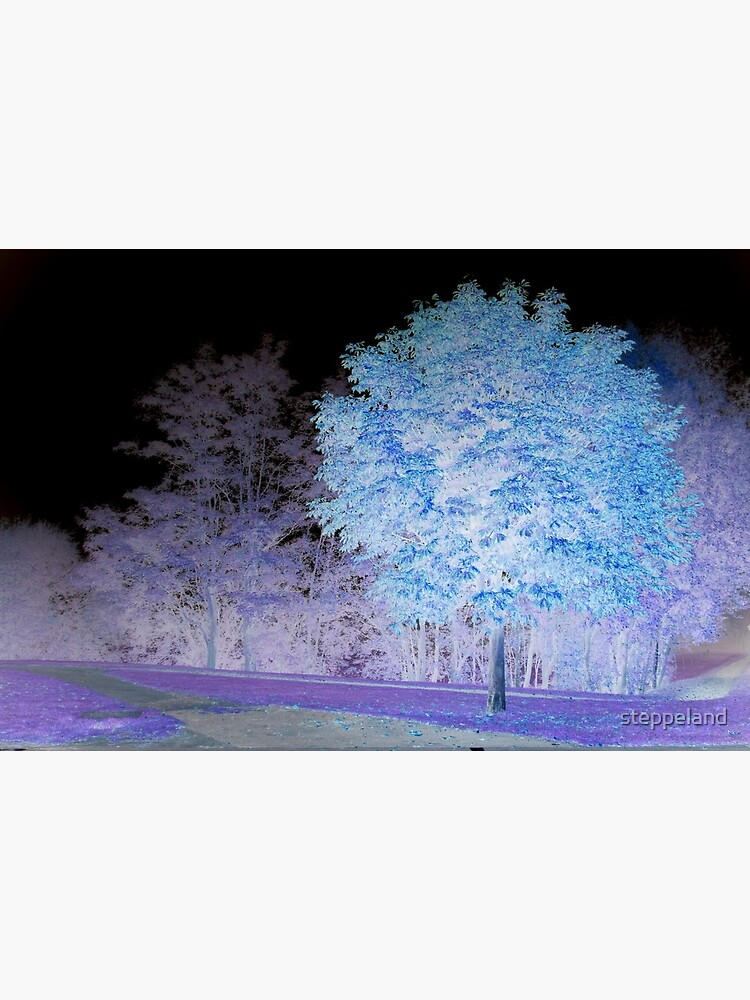 Inverted chestnut in blue-purple by steppeland