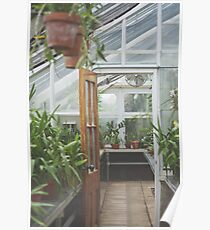 Through the Greenhouse Poster