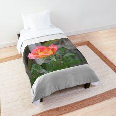 A Bit of Blush Comforter