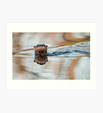 Northern River Otter Art Print