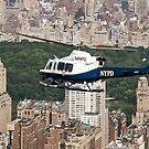 Central Park Flight by Ken Scarboro