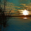 A WINTER SUNSET  by leonie7