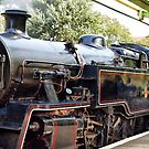 Steam ~ What An Era by Clive