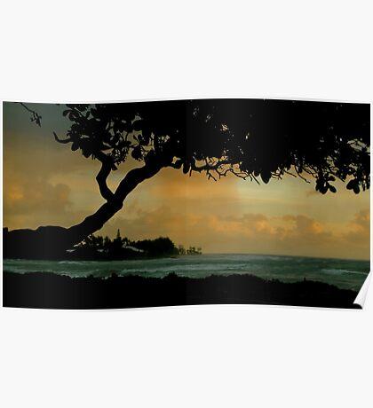 Tree Cover... Kauai Sensual Series Poster